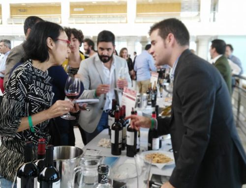 XVII Hall of the Best Wines of Spain
